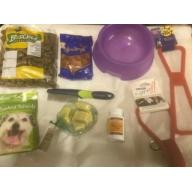 Dogs Bundle Selection Lot