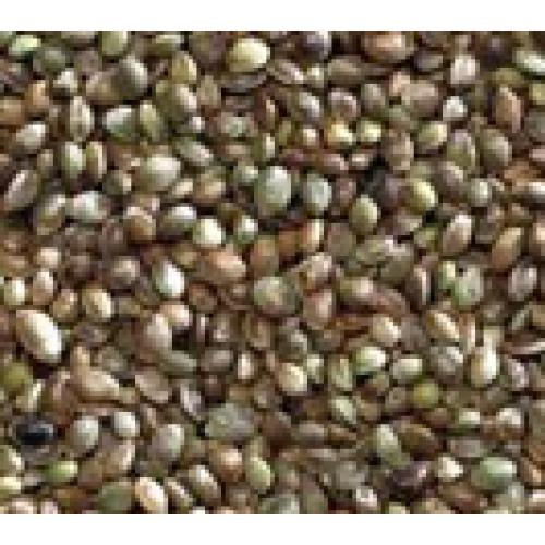 Hemp Seed For Caged Birds & Racing Pigeons